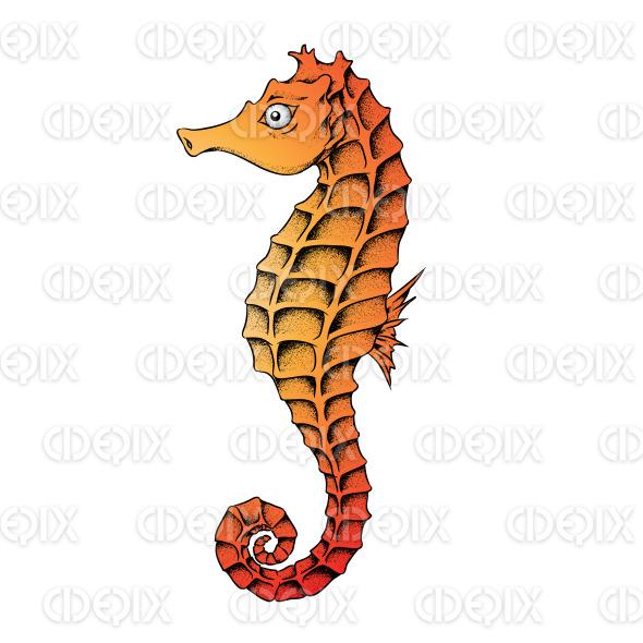 Orange Seahorse Line Art Illustration stock illustration