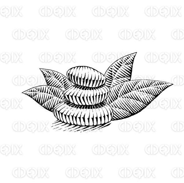 Vectorized Ink Sketch of Spa Stones stock illustration