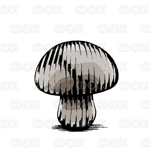 Ink and Watercolor Sketch of a Mushroom stock illustration