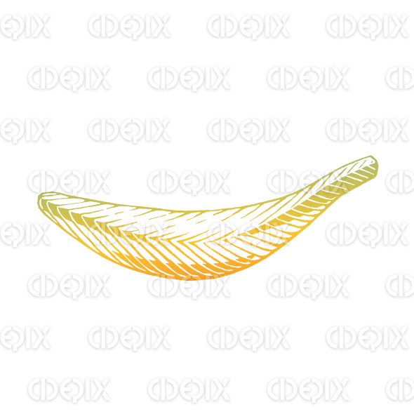 Yellow Vectorized Ink Sketch of Banana Illustration stock illustration