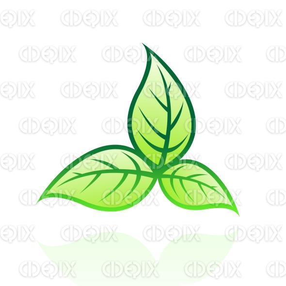 green glossy leaves stock illustration