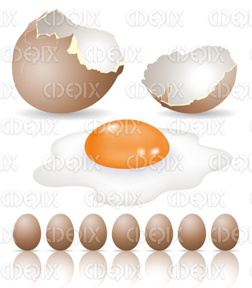 brown eggs and broken egg shell stock illustration