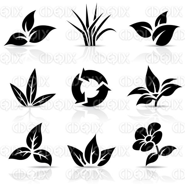 Black Leaves isolated on white stock illustration