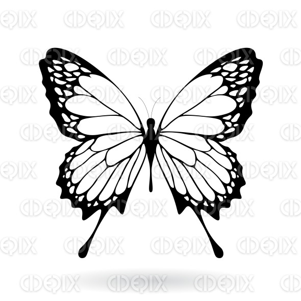 Black Butterfly with Classic Wings stock illustration