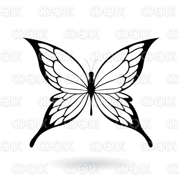 Black Butterfly with Fairy Wings stock illustration