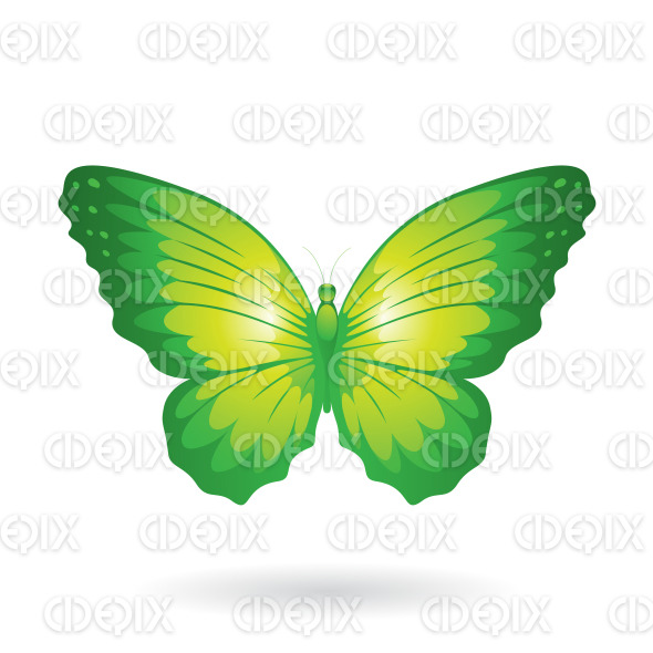 Green Shiny Butterfly with Wide Wings stock illustration