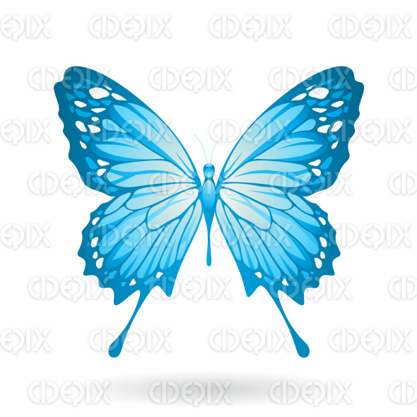 Blue Butterfly with Classic Wings stock illustration