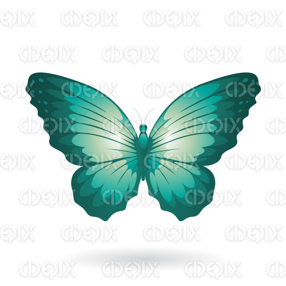 Persian Green Shiny Butterfly with Wide Wings stock illustration