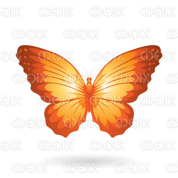 Orange Shiny Butterfly with Wide Wings stock illustration