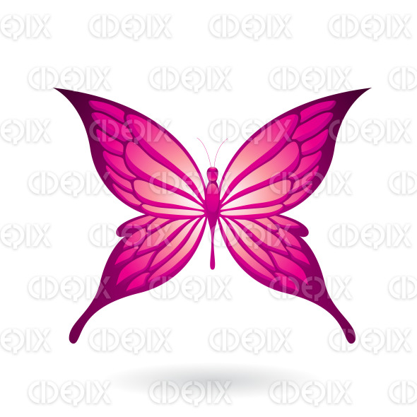 Shiny Magenta Butterfly with Fairy Wings stock illustration