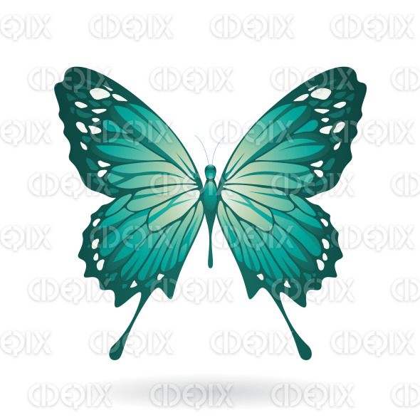 Persian Green Butterfly with Classic Wings stock illustration