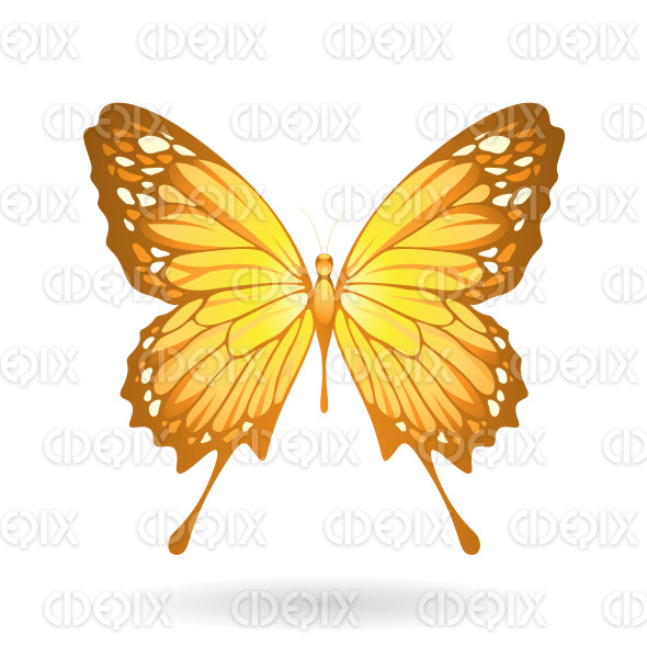 Yellow Butterfly with Classic Wings stock illustration