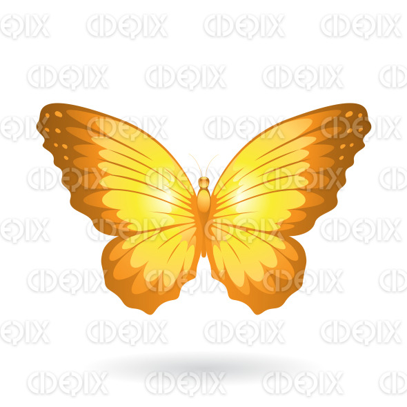 Yellow Shiny Butterfly with Wide Wings stock illustration
