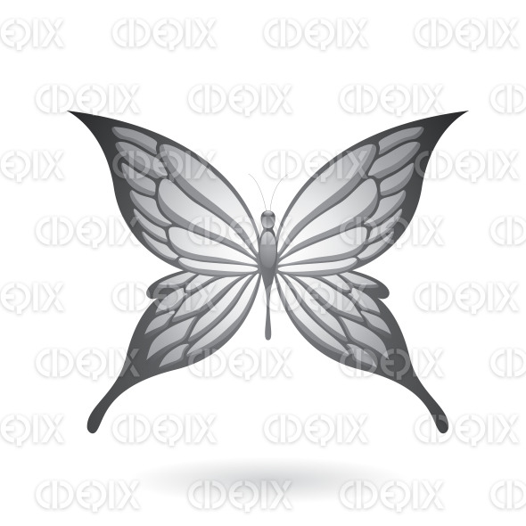 Shiny Grey Butterfly with Fairy Wings stock illustration