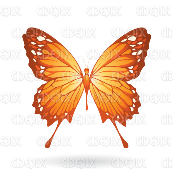 Orange Butterfly with Classic Wings stock illustration