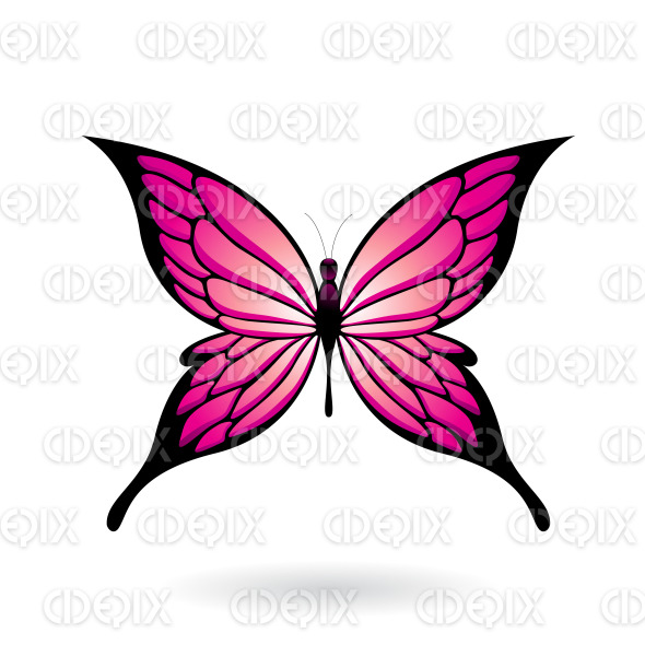 Magenta and Black Fairy Wing Butterfly stock illustration