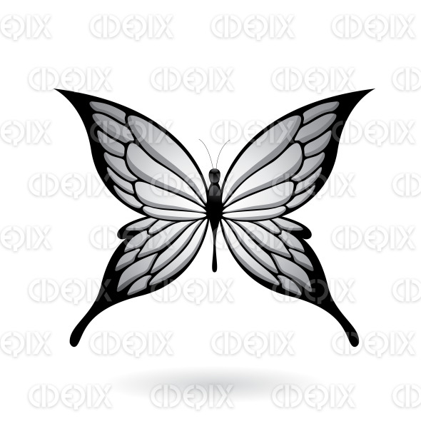 Grey and Black Fairy Wing Butterfly stock illustration
