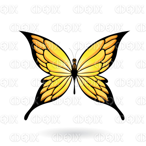Yellow and Black Fairy Wing Butterfly stock illustration
