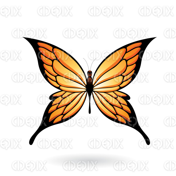 Orange and Black Fairy Wing Butterfly stock illustration