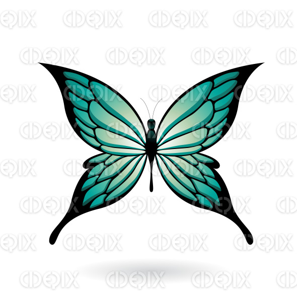 Persian Green and Black Fairy Wing Butterfly stock illustration